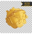 Gold shiny metallic brush stroke Golden design vector image