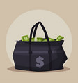 money bag cartoon vector image vector image