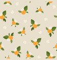 pattern with orange mandarin vector image vector image