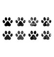 paw prints set hand drawn sketch vector image vector image