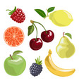 the fruit set in cartoon vector image vector image
