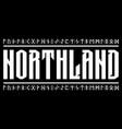 viking scandinavian design handwritten vector image vector image