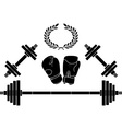 weights and boxer gloves vector image vector image