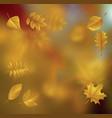 autumn01 vector image vector image