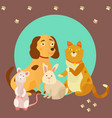 bright images of domestic animals cat rat dog vector image vector image