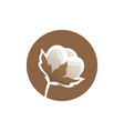 cotton flower logo template vector image vector image