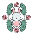 cute little rabbit with flowers and feathers frame vector image vector image