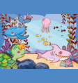 cute sea animals with seaweed plants vector image