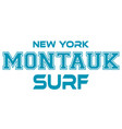montauk surfing urban apparel modern design vector image