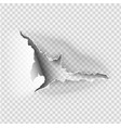 ragged hole torn in ripped paper on transparent vector image vector image