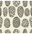 Seamless pattern with pine cones vector image vector image