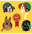 set different dog breeds vector image vector image