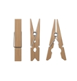 Set of Wooden Clothespins Pegs Front Side View vector image vector image