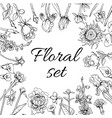 vintage monochrome blossom flowers set vector image vector image