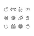 apples flat line icons apple picking autumn vector image vector image