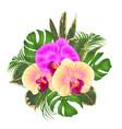 bouquet with tropical flowers floral arrangement vector image vector image