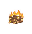 cartoon bonfire - log cabin method firewood vector image vector image