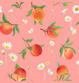 peach pattern with daisy tropic fruits leaves vector image vector image