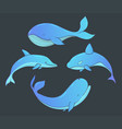 set of underwater animals with whales and dolphin vector image vector image