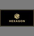 ae hexagon logo design inspiration vector image vector image