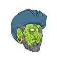 buccaneer pirate grime art vector image vector image