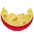 Cheese slice vector image vector image
