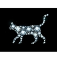 Diamond Cat vector image