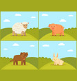 farm and domestic animal on green meadow backdrop vector image vector image