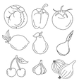 Freehand sketches vector image vector image