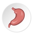 Stomach icon cartoon style vector image vector image