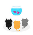 three kittens looking to aquarium with fish set vector image