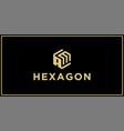 am hexagon logo vector image vector image