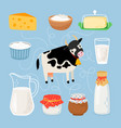 cow and dairy products vector image