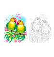 fantasy couple romantic parrots lovebirds vector image