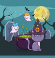 halloween cat and ghosts vector image vector image