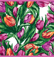 seamless background of the drawn tulips vector image vector image