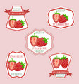the theme strawberry vector image vector image