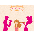 beautiful woman in hairdressing salo vector image vector image