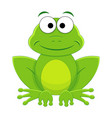 cute funny cartoon frog vector image