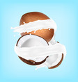 coconut in a milk splash vector image vector image