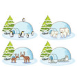 four winter scenes with different animals vector image