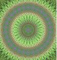Green mandala ornament background design vector image vector image