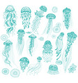 set decorated hand drawn jellyfishes vector image