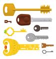 set different keys vector image