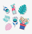 set plant leaves and flowers with watering bottle vector image