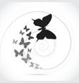 Silhouette butterflies vector image vector image