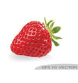 strawberry with leaves isolated on white backgrou vector image