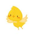 cute chicken flapping wings funny bird cartoon vector image vector image