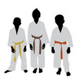 karate kids with different color belt rank vector image vector image