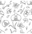 lisianthus flowers and leaves vector image vector image